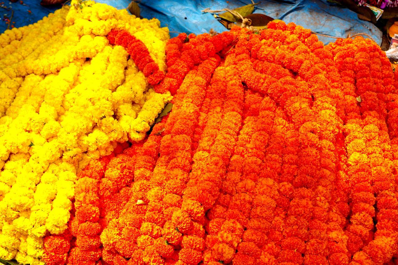 title-nimesha-flowermarket